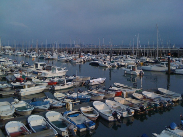 The sporting harbor