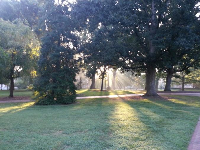 I love my morning walk to class
