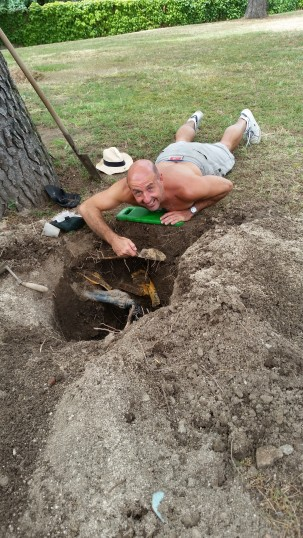 Garden work (fixing sprinkler plumbing)