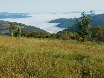 Galician hills
