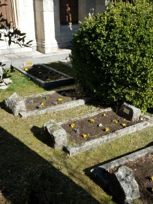 My work planting pansies and cleaning tombs