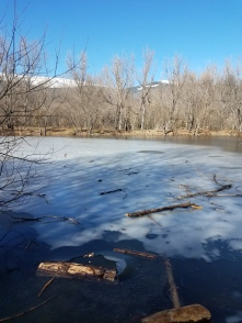 It was nippy enough for frozen ponds